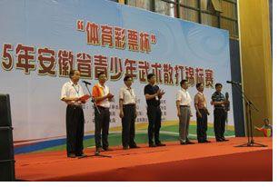 安徽青少年武术散打锦标赛开幕